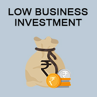 Low Business Investment